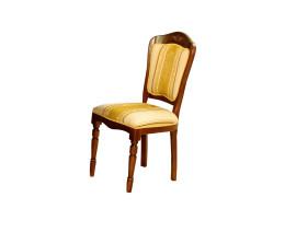 scaun larisa nuc